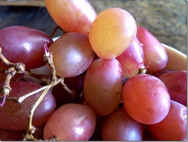 grapes-public-domain-pictures-1 (2238)