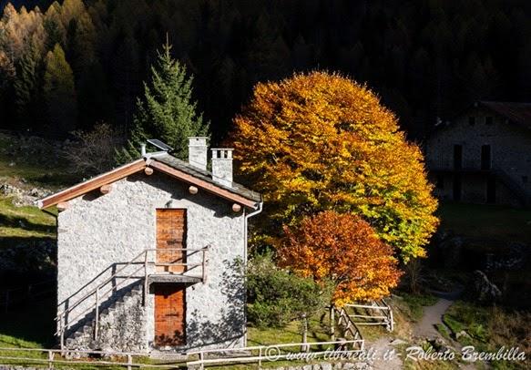 23-2014-11-01_Val di Mello (292)