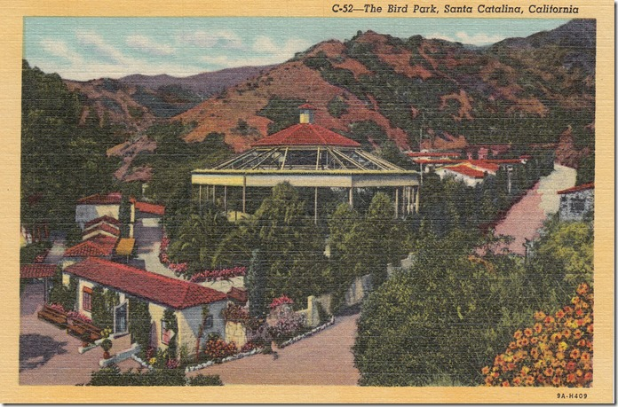 The Bird Park, Santa Catalina, California pg. 1