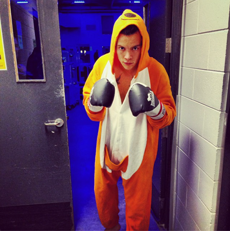 and the boxing kangaroo was Harry! 1DHQ