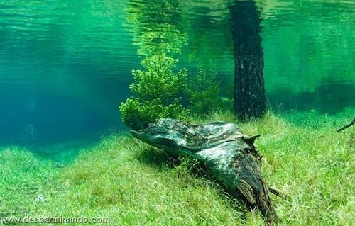 Green Lake parque submerso austria desbaratinando (5)