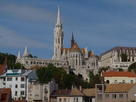 Catedrala Ungaria: Catedrala Matei Corvin