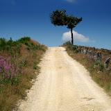 Camino 2010 090.jpg