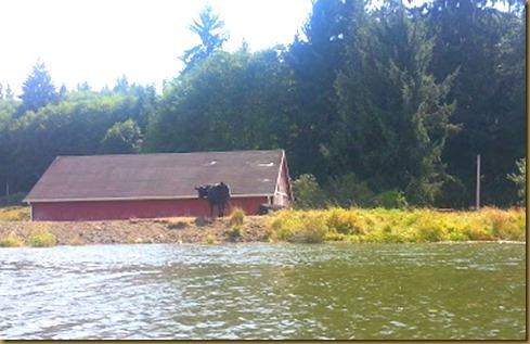 klaskanine river scene1