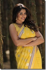 richa_gangopadhyay_beautiful_stills