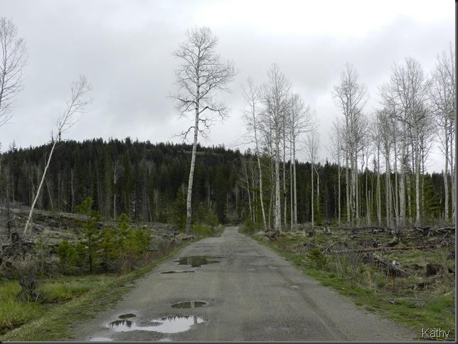 The road to Stake Lake
