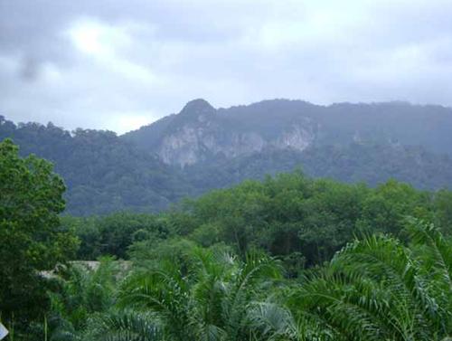صور طبيعة بوكيت
