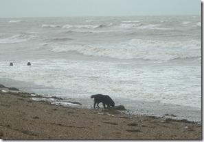 stormy sea 005