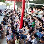 audience watching the Dolphin show at the Shinagawa Aquarium in Shinagawa, Tokyo, Japan