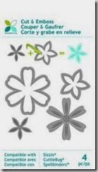 momenta flowers