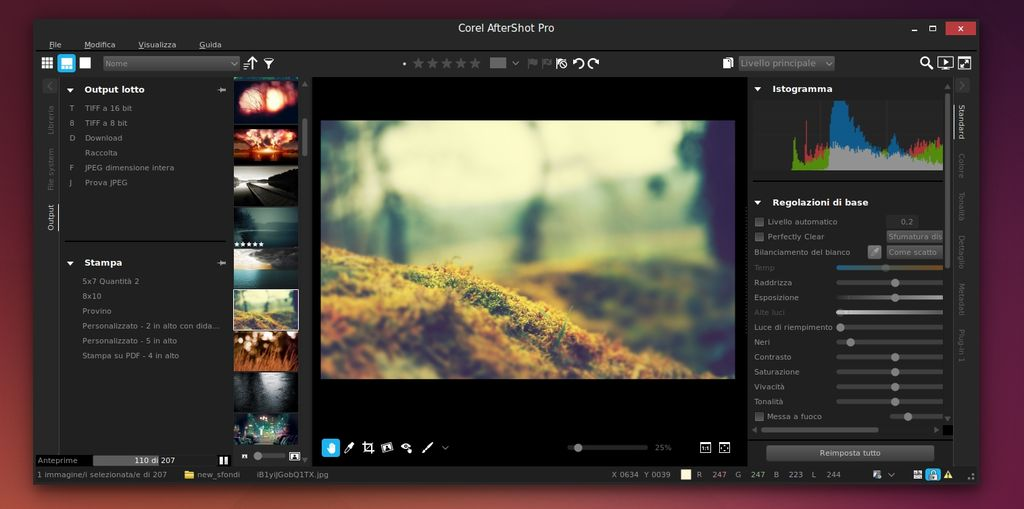 Corel AfterShot Pro 2 in Ubuntu Linux