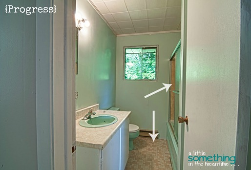 Bathroom Progress WM