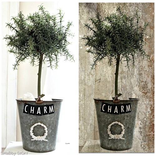topiary pm