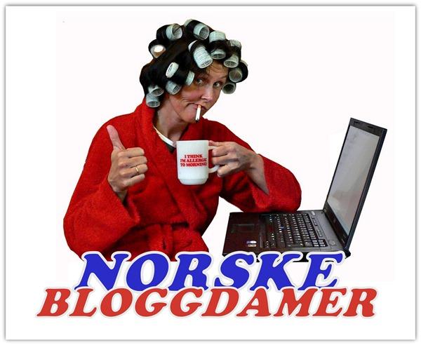 Norske bloggdamer 1