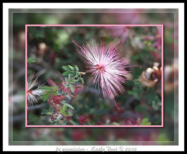 flower burst-2
