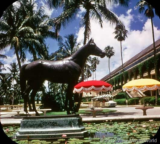 View-Master Miami and Miami Beach (A963), Scene 14: Statue of Citation, Campion Race Horse, at Hialeah Park