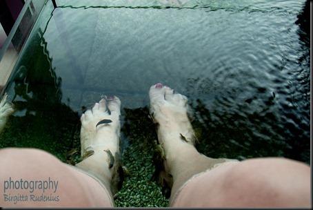 br_20120403_feet