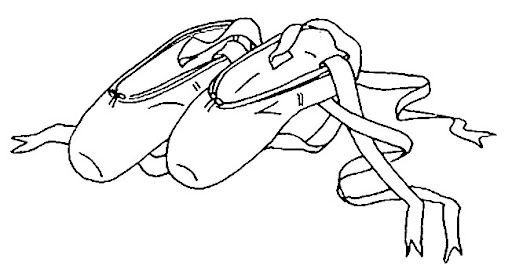 Dibujos Zapatillas Ballet Para Pintar MEMES Pictures
