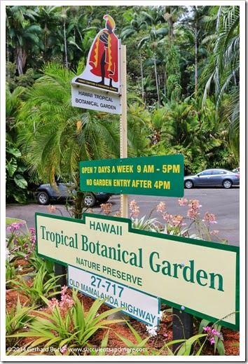 140728_HawaiiTropicalBotanicalGarden_0002