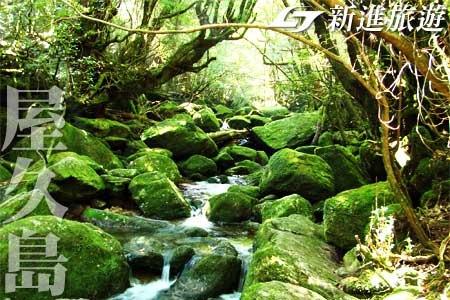 日本旅遊-屋久島