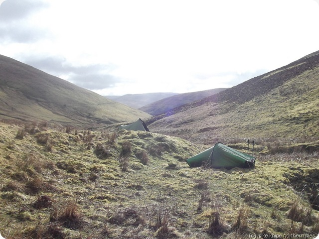 wolfhope camp