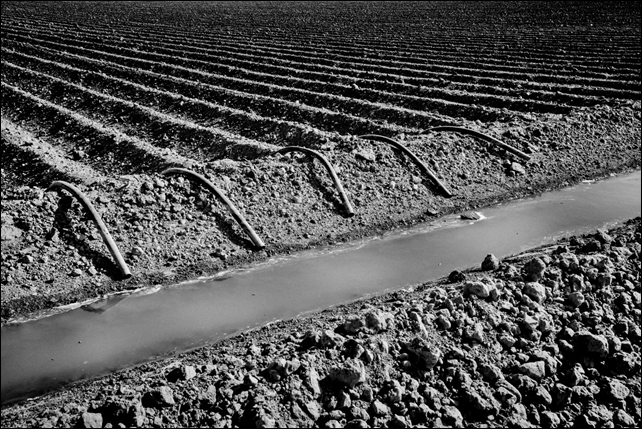 A nearly dry irrigation ditch on Eric Barlow's Central Valley farm, September 2014. Photo: Matt Black