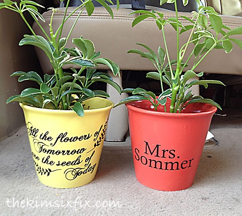 Potted plant teacher gift