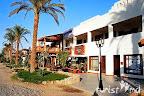 Фото 5 Delta Sharm