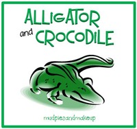 AlligatorCrocodile Box
