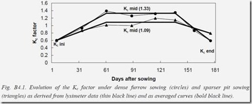 Evolution of the Kc factor under dense furrow sowing and sparse pit sowing as derived from lysimeter.