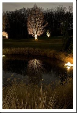 2011Dec31-Brookside-Gardens-87