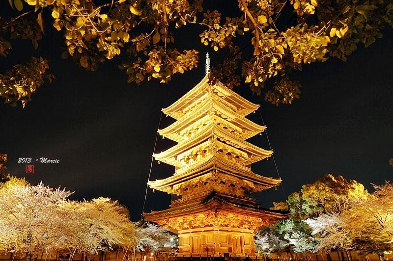 日本 京都 東寺 夜櫻