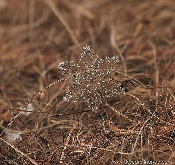 flocos-de-neve-macro-snowflakes-macro-photography-andrew-osokin-desbaratinando (12)