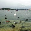 szwajcaria_2011_genewa_14.jpg
