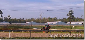 Bettys Part 6 and Delta Downs 071