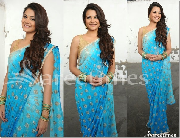 Blue_Embrodiery_Net_Saree