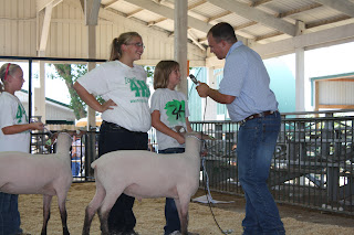 Clover Kid member Olivia Pacha visited with the judge while her 4-H Sheep Mentor, Joceline Spenner, stood alongside.  Another Clover Kid member Hailey Schultz waited anxiously for her turn with the judge.  Lambs behaved exceptionally well during the heat and new showman.   Photo Courtesy of the Washington County Extension.