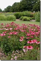 sussex prairie garden 014