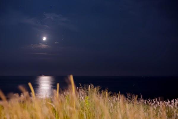 月明かりの写真