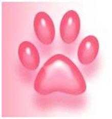 rosa tass