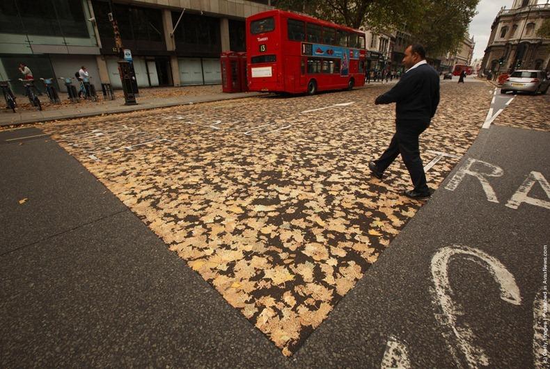 leaves-carpet-3