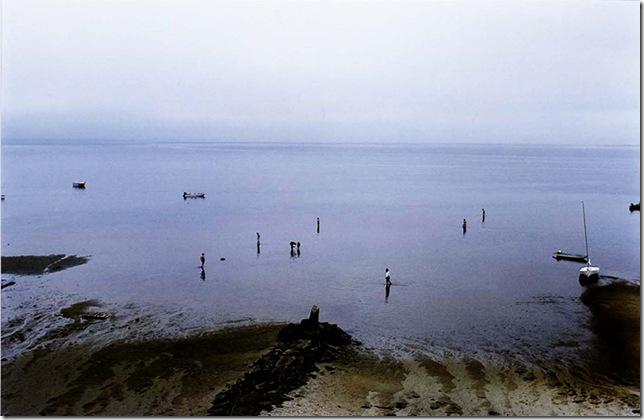 Harry Callahan_Cape Cod(2)_1980