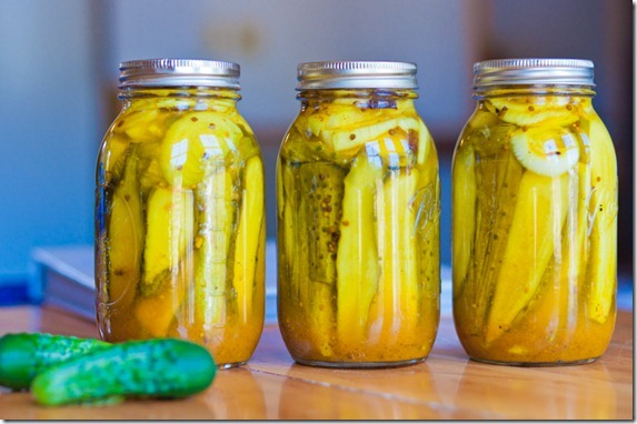 zesty bread butter pickles-4844