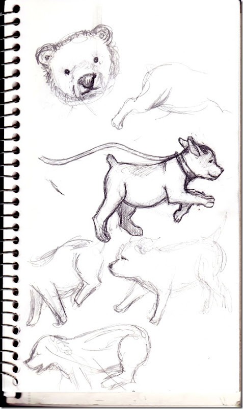 dog-sketch