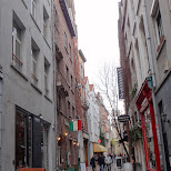 in Antwerp, Antwerpen, Belgium