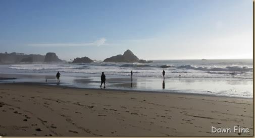 Harris Beach_247