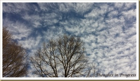 Winter Sky Jan 2015 at Thoughts in Progress