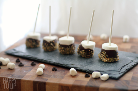 smores dipped marshmallow pops