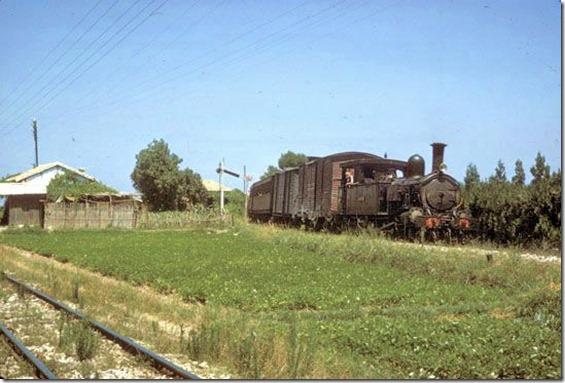 TrainCol (43)