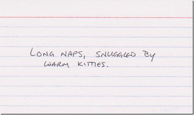 Long naps, snuggled by warm kitties.